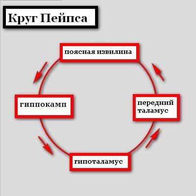 Круг Пейпса